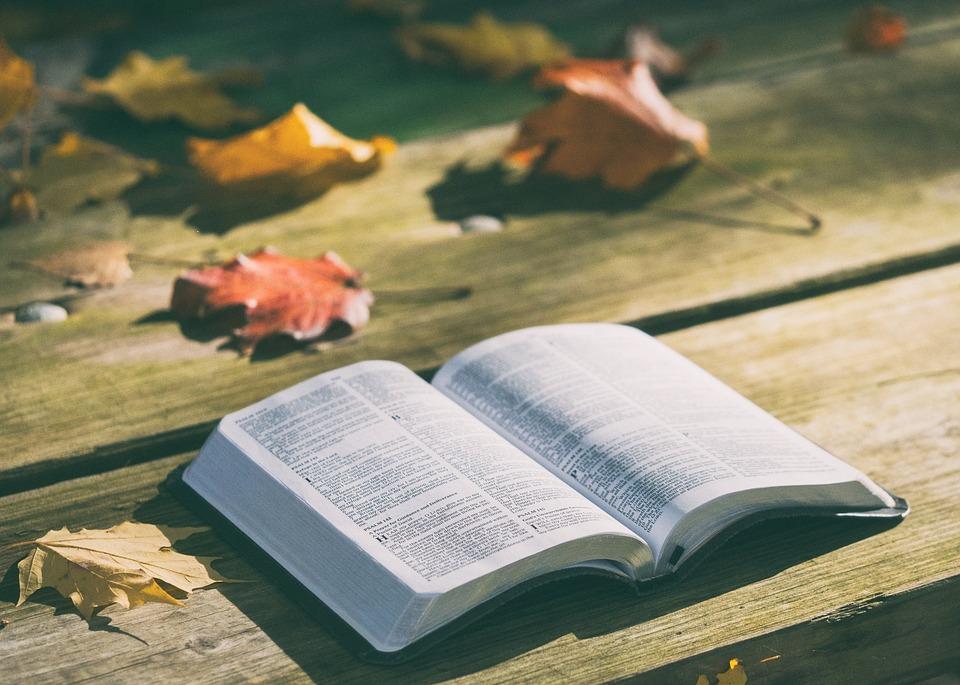 Os livros de outubro