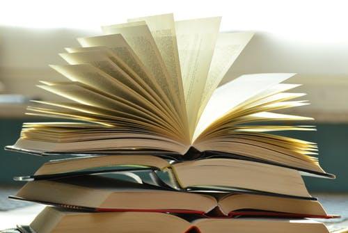 Os livros de janeiro